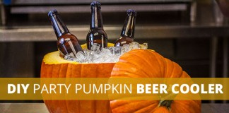 Cut pumpkin beer ice cooler